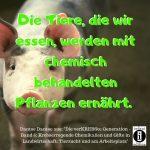 Chemikalien im Tierfutter / Spruch des Tages 15. Oktober 2019