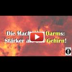 Darm: Stärker als das Hirn! / Darm-Power von Dantse Dantse - Buchvorstellung / indayi edition
